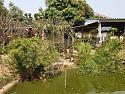 pond297
