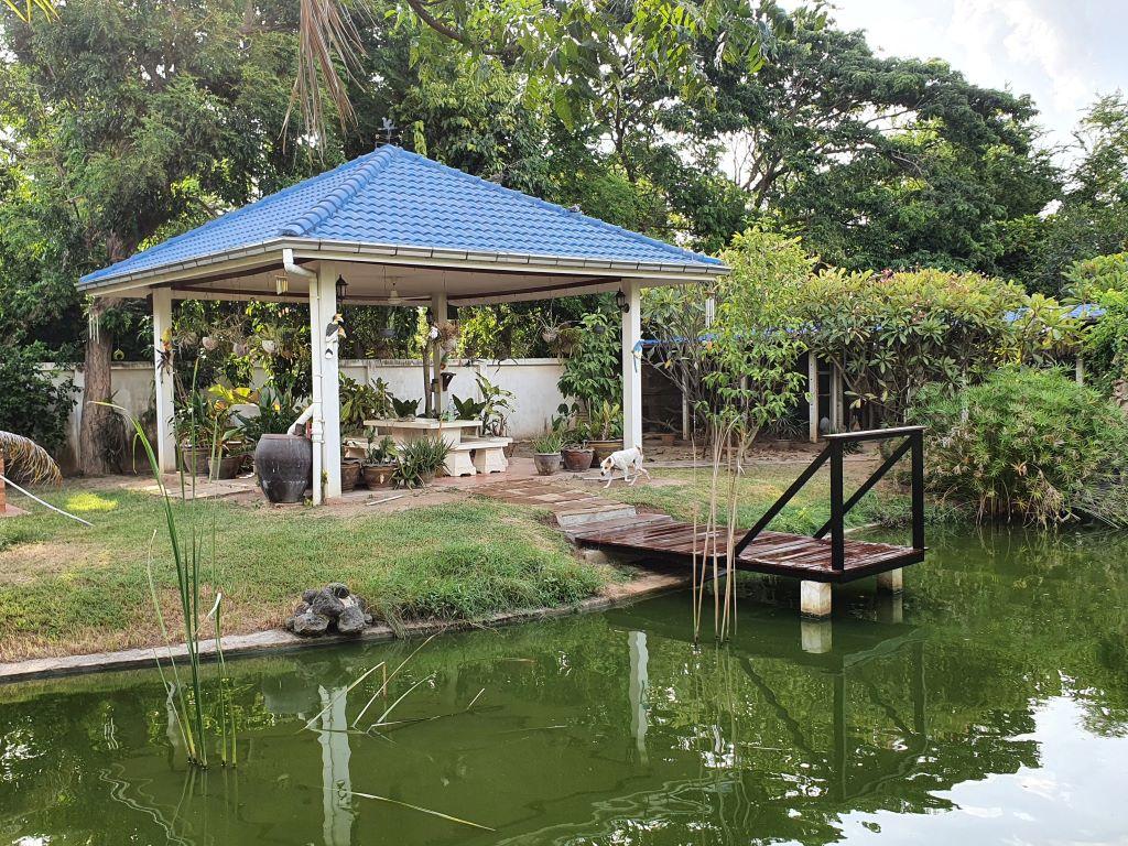 pond591