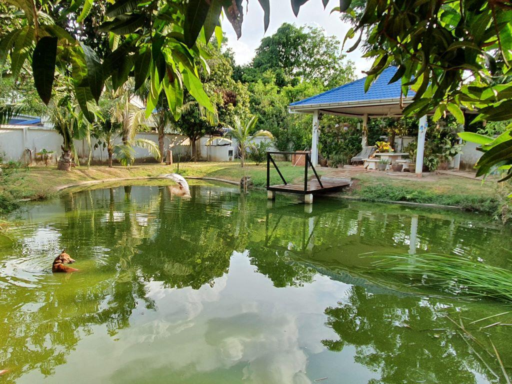 pond592