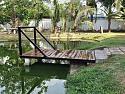 pond593