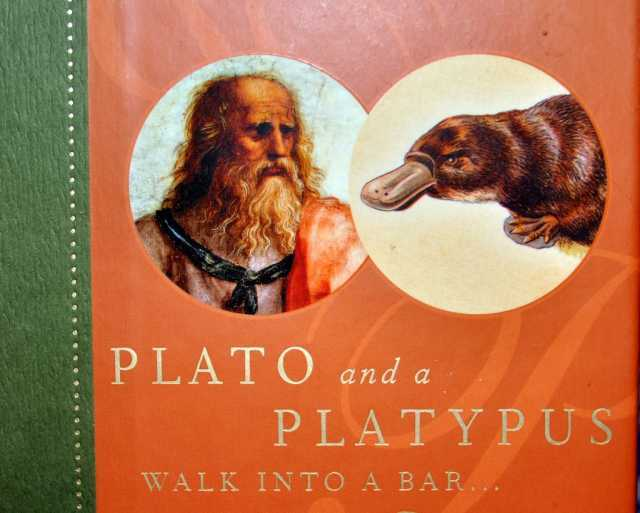 Things to do/see in Brisbane?-plato-platy-pus-walk-into-bar