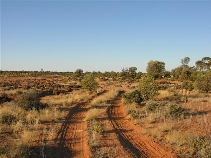 Wayne Kerr Does the Desert-anne-beadell-track-wa-medium-jpg