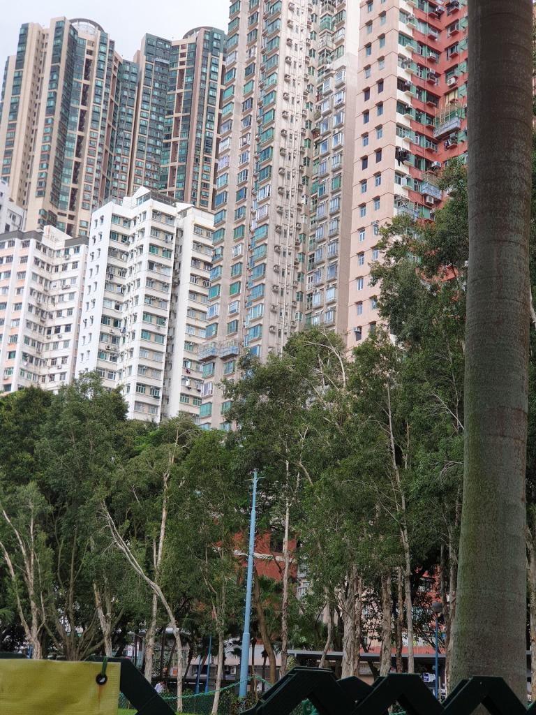 Picturethread: a week in Hong Kong and Macau.-20190628_161725-jpg