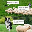 Amusing Pictures ripped from the Net-4yh28nqgmkj41-jpg