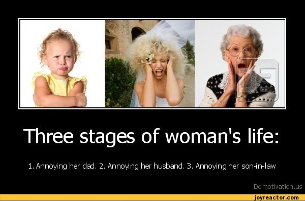 Amusing Pictures ripped from the Net-img_0849-jpg