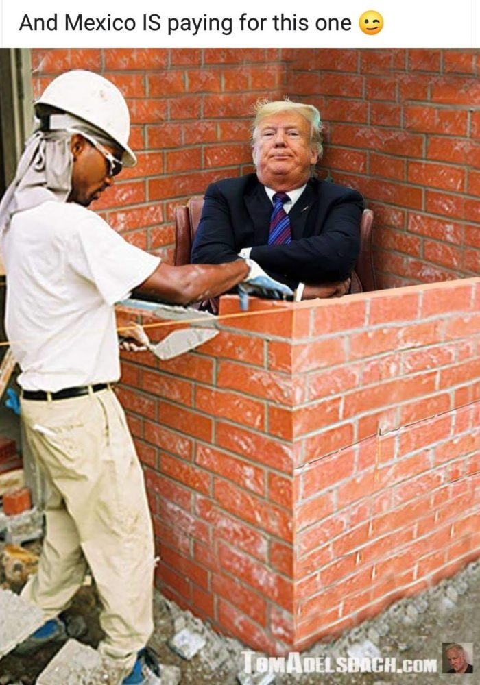 Amusing Pictures ripped from the Net-trump-mexico-paying-wall-700x1000-jpg