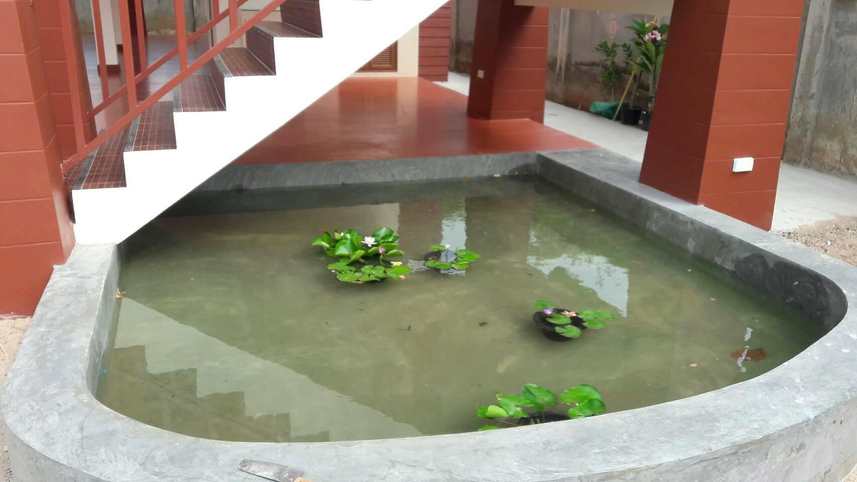CONCREte Tanks for fish.-koi-pond-jpg
