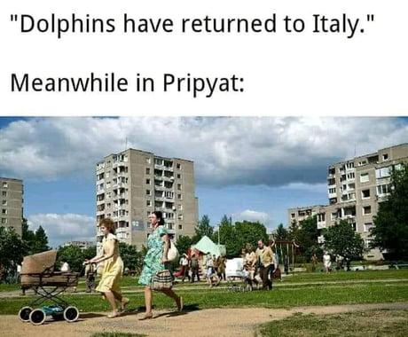 Coronavirus jokes-dolphin10-jpg