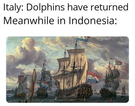 Coronavirus jokes-dolphin07-jpg