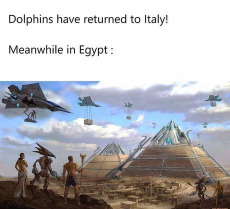 Coronavirus jokes-dolphin02-jpg