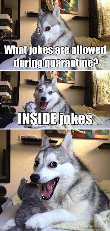 Coronavirus jokes-alwg1b5_460s-jpg