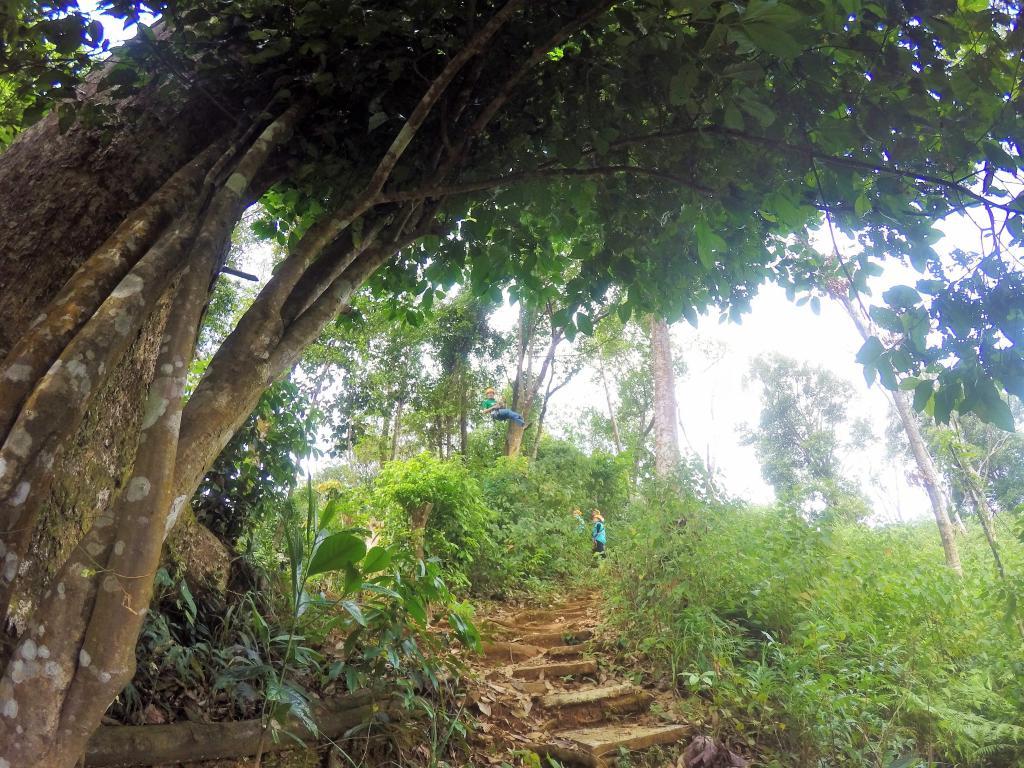 Bungling in the Jungle, Laos, 2018.-069-2-jpg