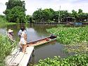 Thailand:- Life on the Farm is kind of relaxed-20130916_131946-1-large-jpg
