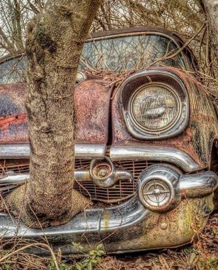 Abandoned cars picture thread-20201112_212023-jpg