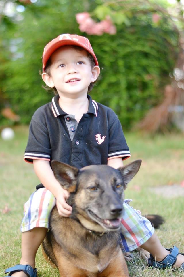 Anna the dog-10351907_702768246430996_7917795476497837836_n-jpg
