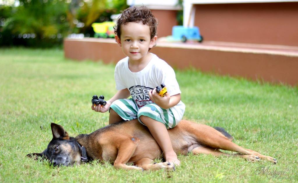 Anna the dog-1167558_696158190425335_2328491672794628321_o-jpg