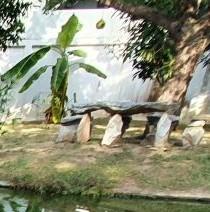 An Isaan Pond-pond590-s-jpg