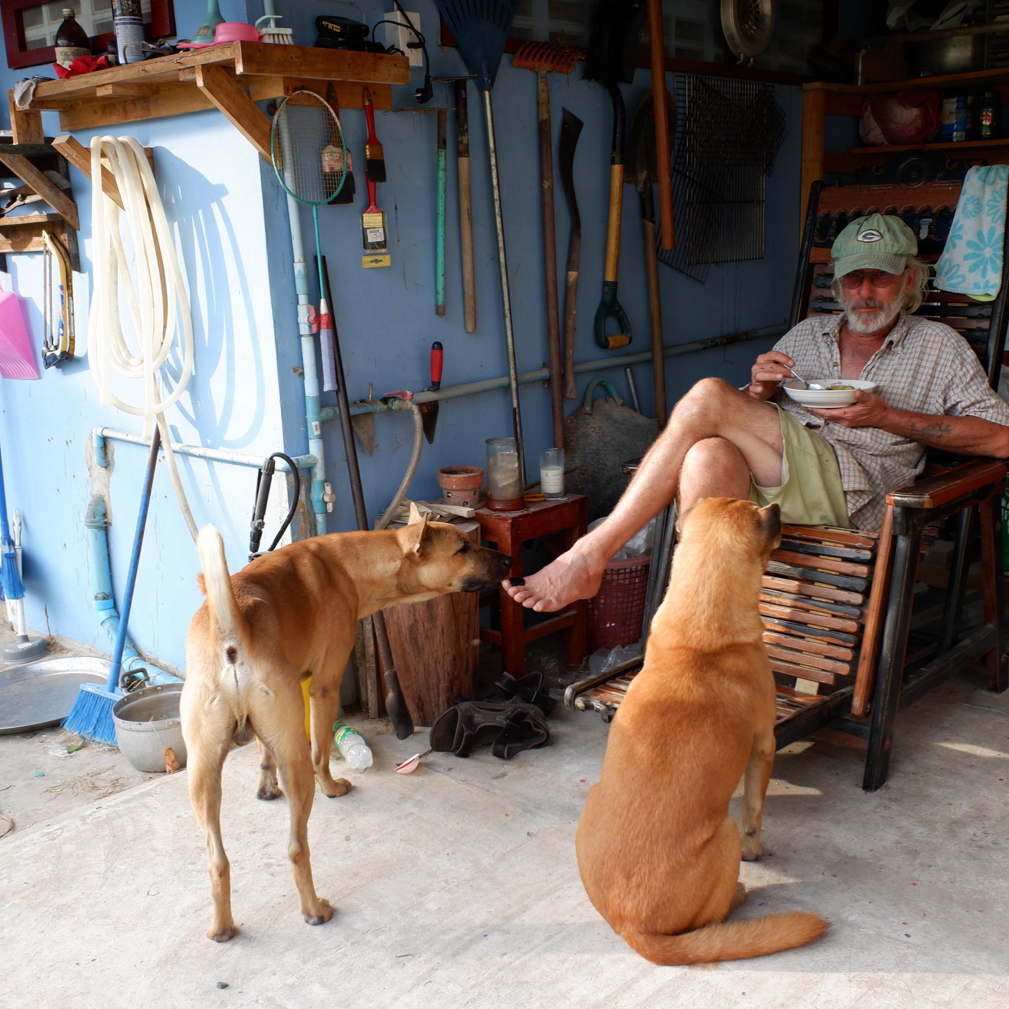 Anna the dog-dscf0622-jpg