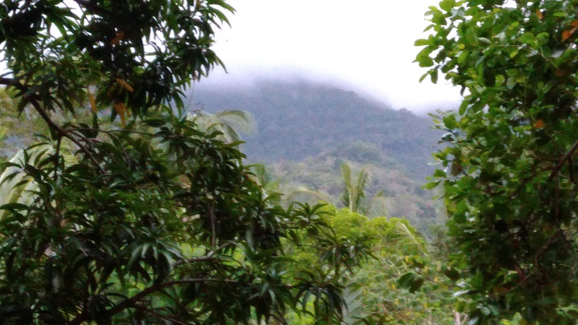 Hiking in the Phils-03_viewofmt-jpg