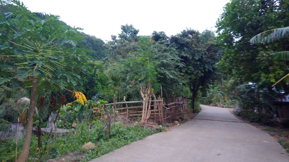 Hiking in the Phils-02_road-jpg