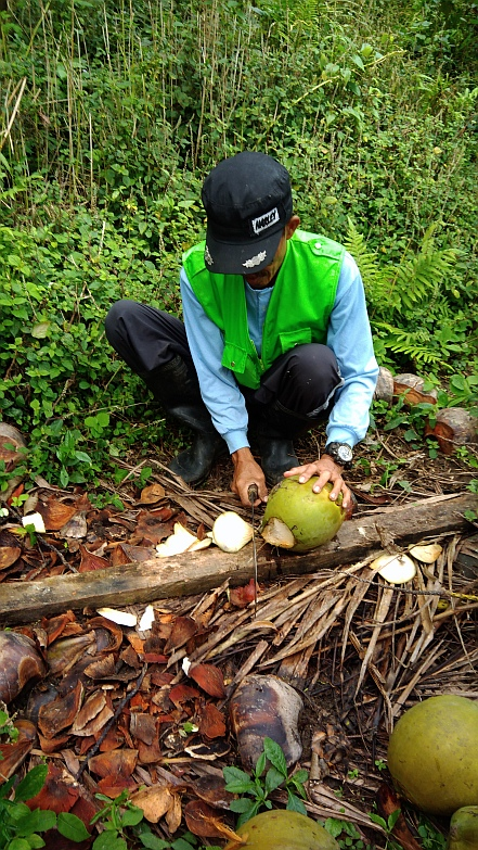 Hiking in the Phils-42_cutting_coco-jpg