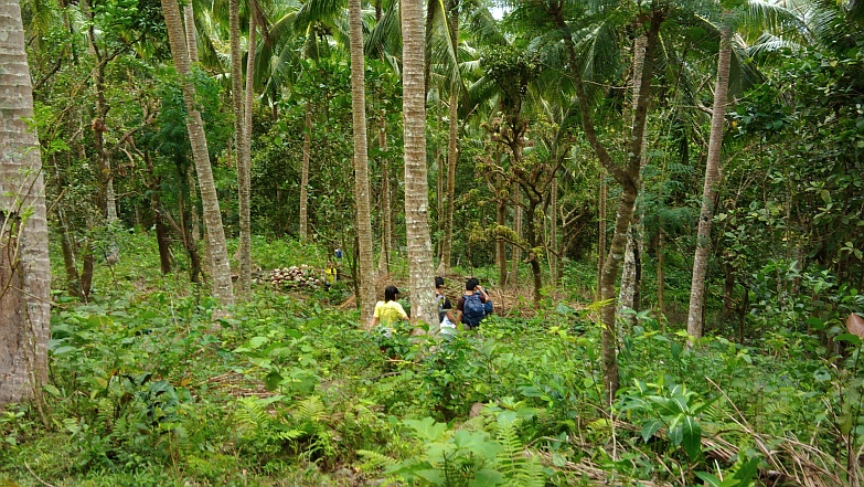 Hiking in the Phils-47_coco_grove-jpg
