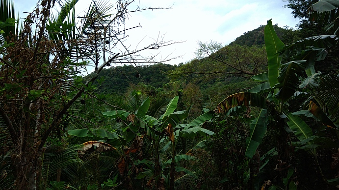 Hiking in the Phils-49a_mount_from_below-jpg