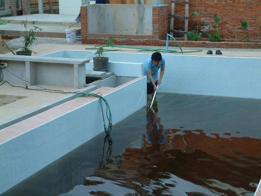 Getting rid of algae in your swimming pool-06010805-jpg