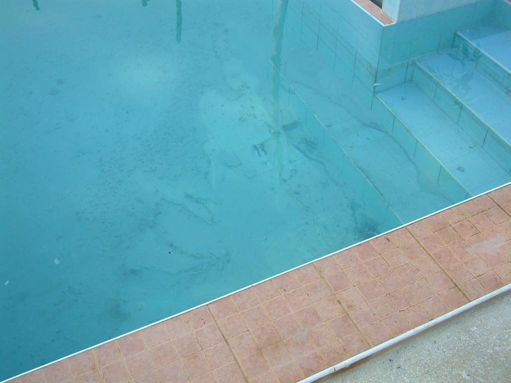 Getting rid of algae in your swimming pool-06011403-jpg
