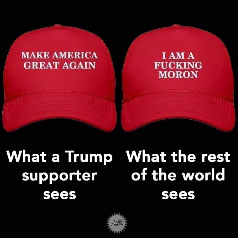 Political cartoons - the 'funny' pics thread.-53703468_10157393479427518_5951214510491566080_n-jpg