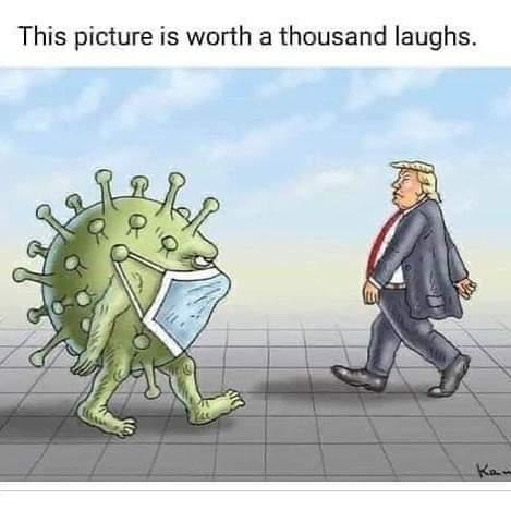 Political cartoons - the 'funny' pics thread.-whatsapp-image-2020-04-27-15-a