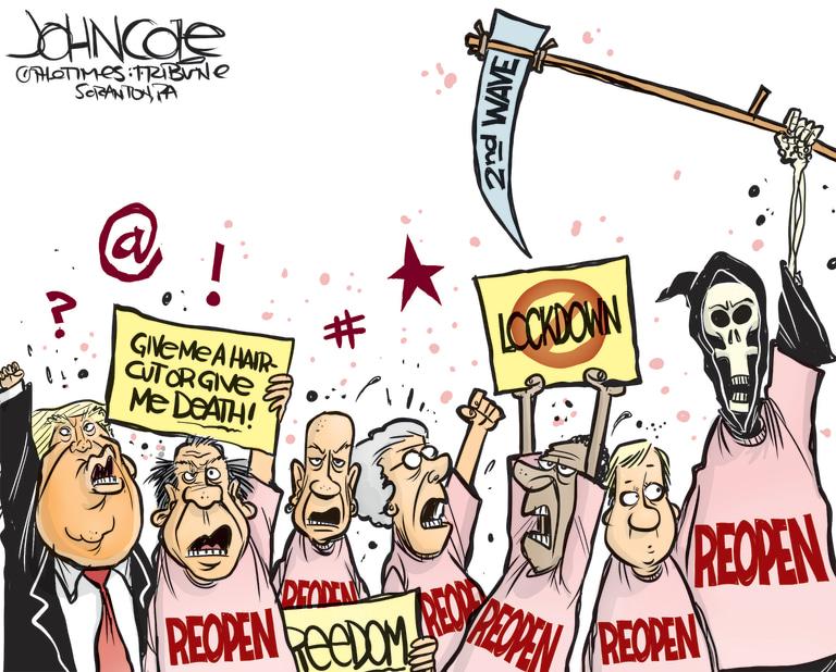 Political cartoons - the 'funny' pics thread.-239060_rgb_768-jpg