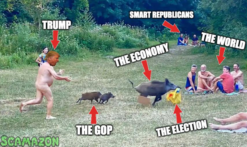 Political cartoons - the 'funny' pics thread.-ee2dtlrwaai3lek-png
