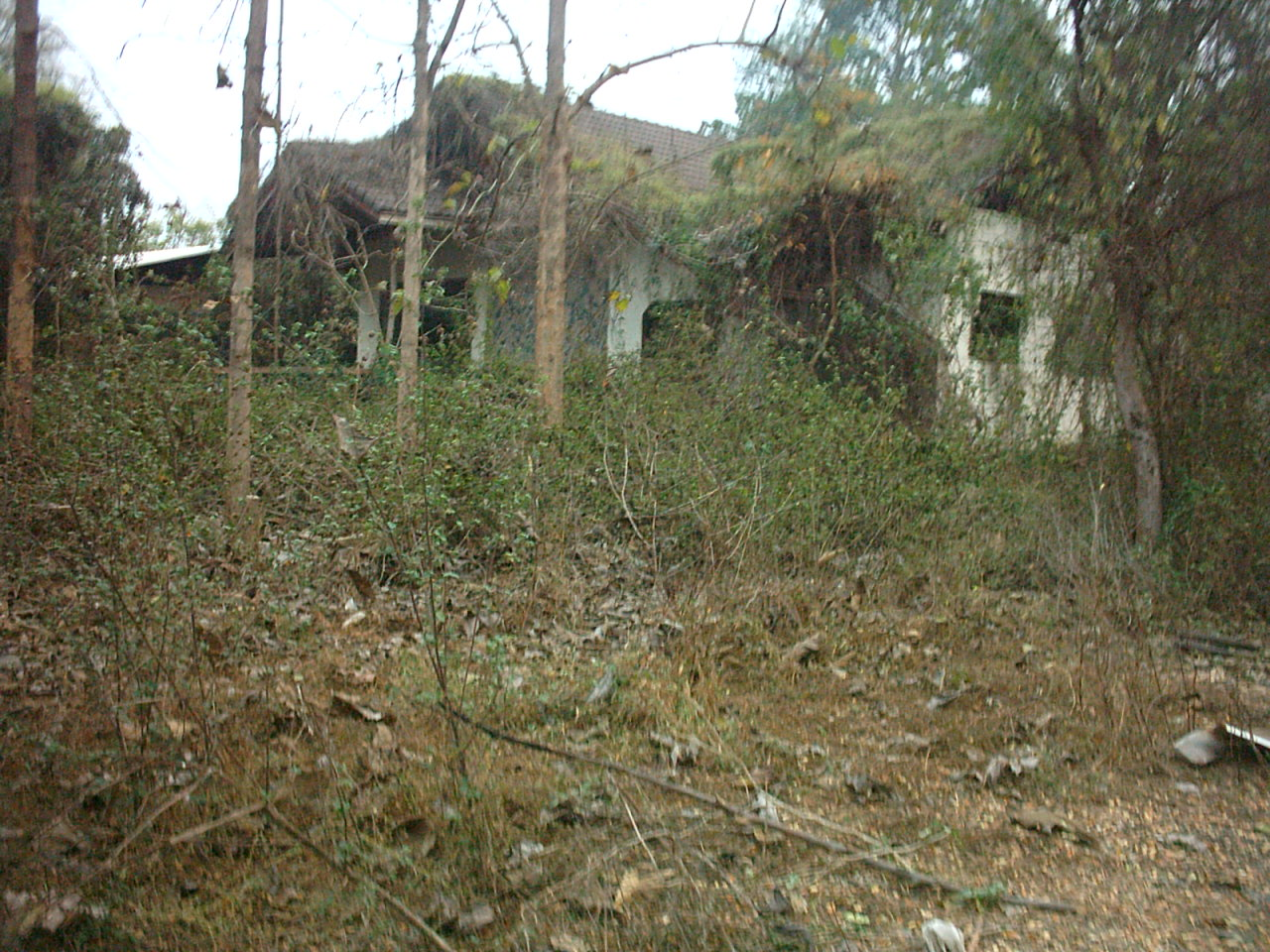 Exploring an abandoned mansion in Chiang Mai-05020224-jpg