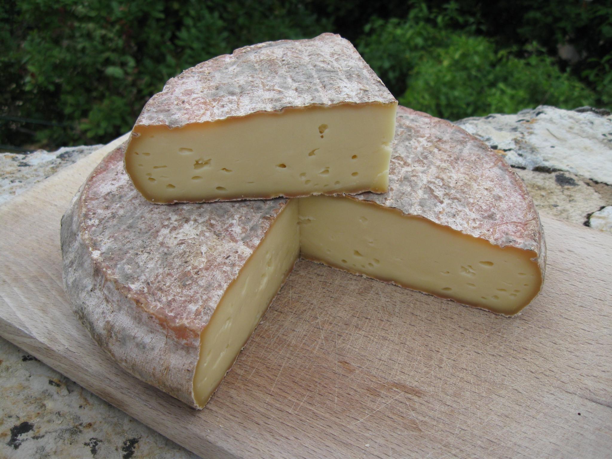 The Teakdoor Cheese Thread-saint-nectaire-jpg