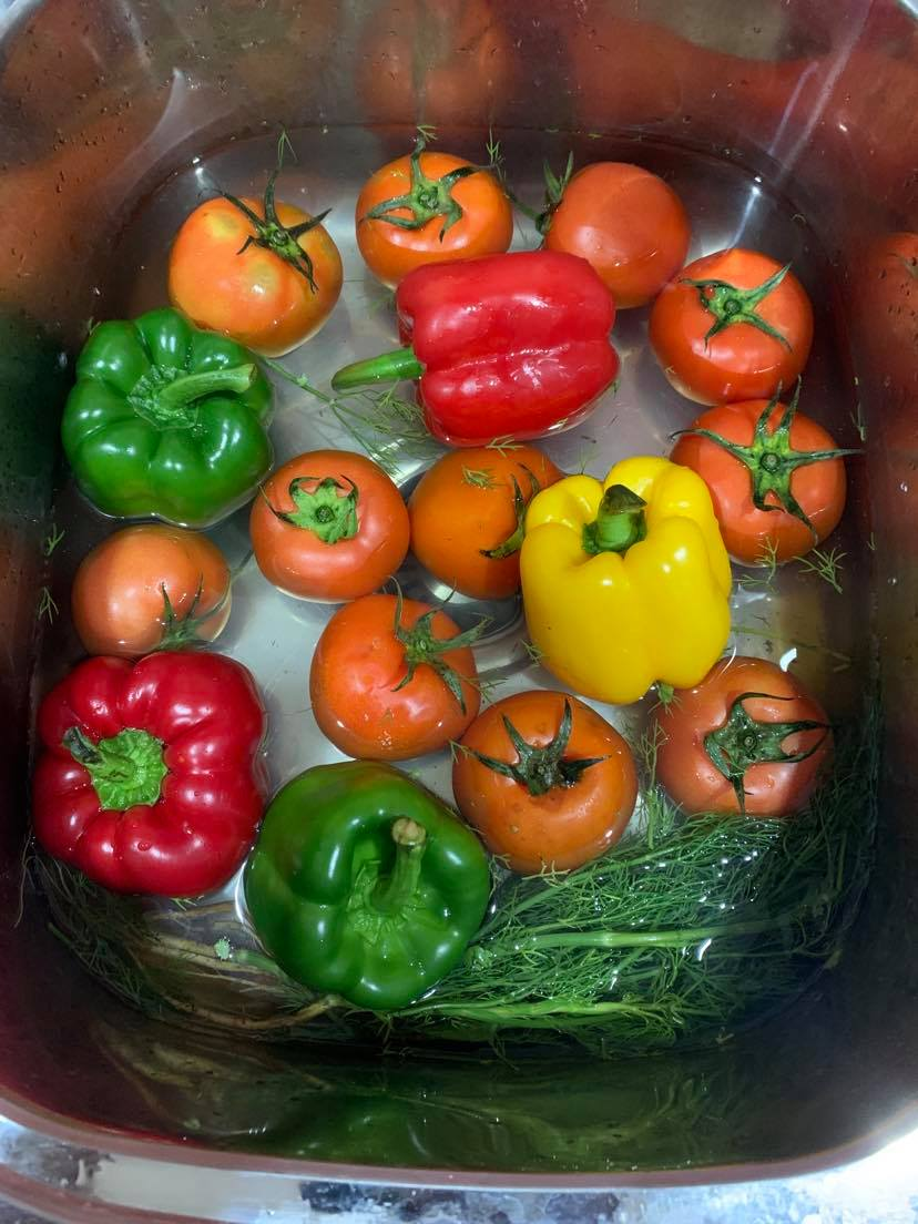 Dinner-tomatoes-raw-jpg