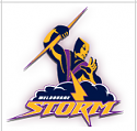 Rugby League 2019-nrl-storm-png