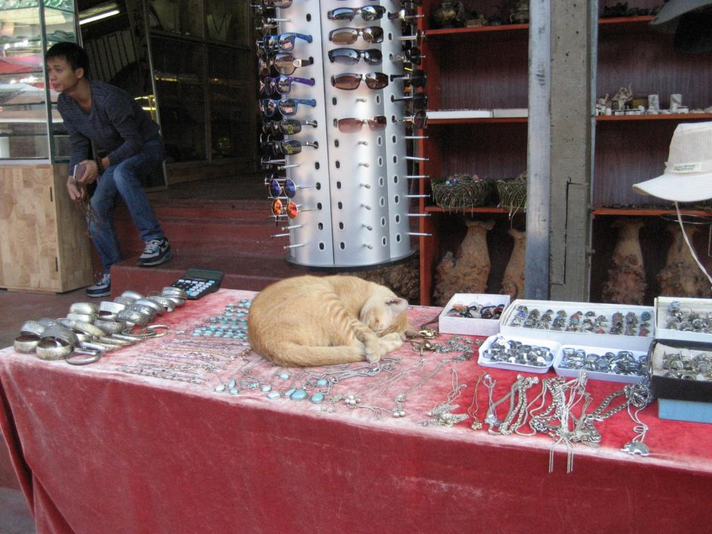 The Teakdoor Cat Thread-laos-cat-jpg
