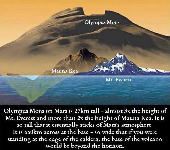Did you know...?-olympus-mons-jpg