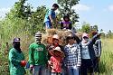 Post any pic anytime as many as u like-rice_farm_2479-jpg