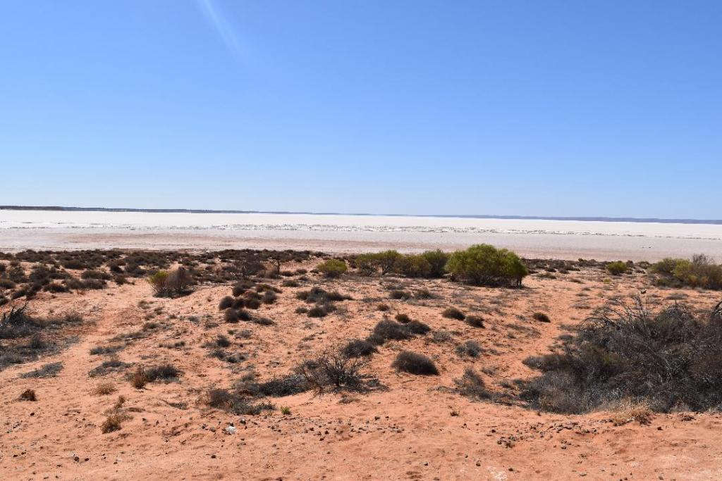 Post any pic anytime as many as u like-coober-2-jpg