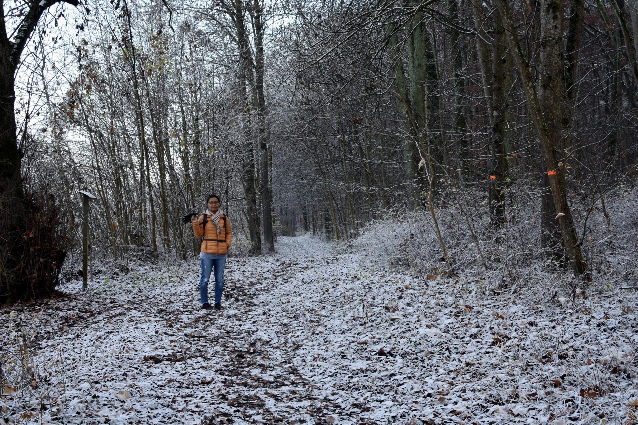 Post a photo a week, of anything/anywhere-jip_winter_1795-jpg
