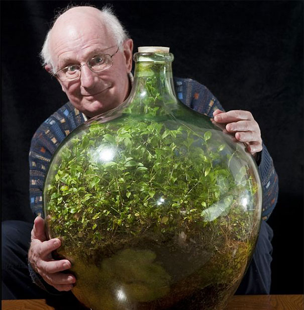 Strange and Unusual Facts-sealed-bottle-garden-david-latimer-1-a