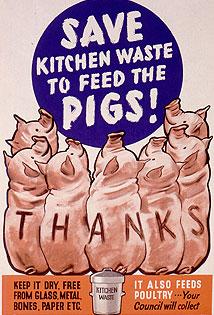 Best Poster ?-pigs-jpg