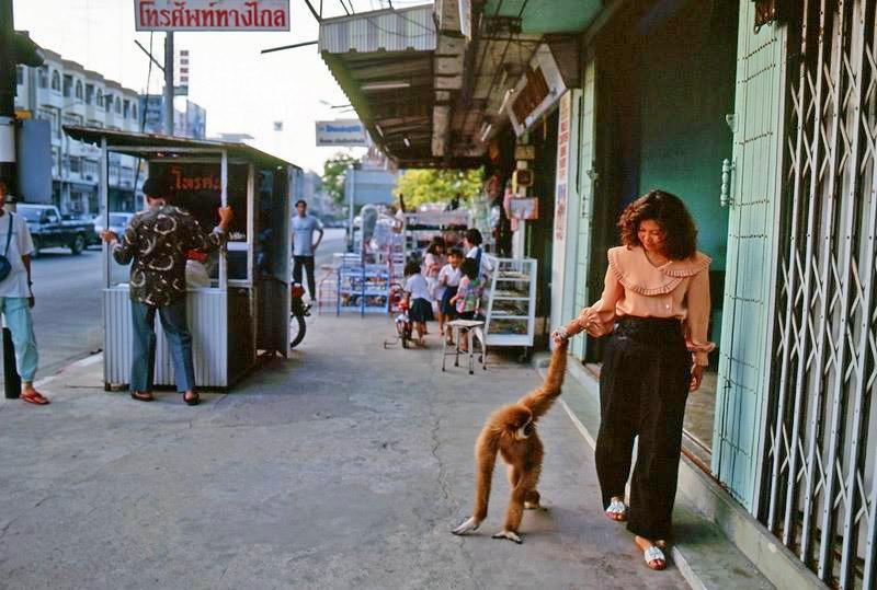 Memory Lane (In my own language)-1980-011songkla-jpg