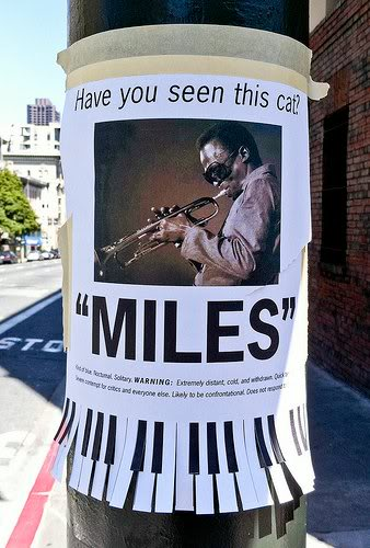 Best Poster ?-hilarious-street-signs-25-jpg