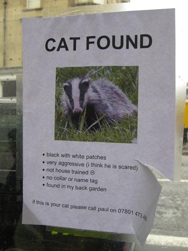 Best Poster ?-hilarious-street-signs-9-jpg
