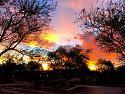 Our Favourite Sunrises-img_7099a-jpg