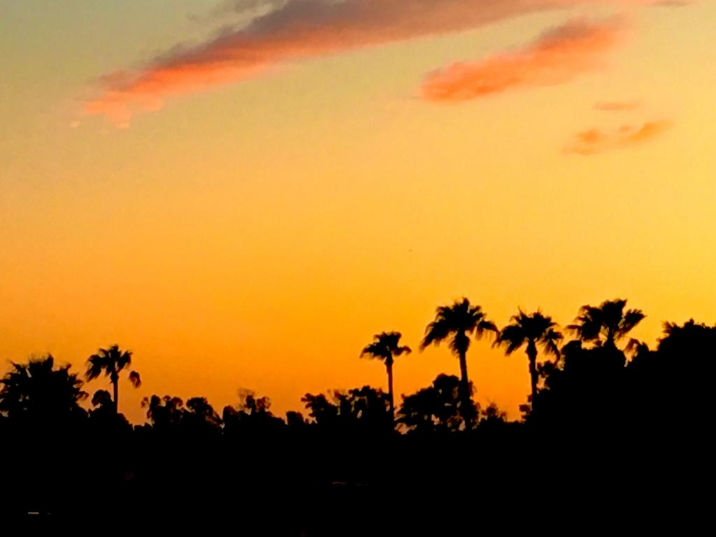 Our Favourite Sunsets-img_3882a-jpg