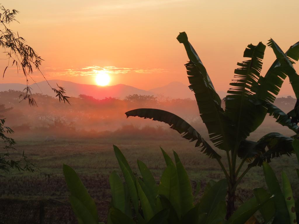 Our Favourite Sunrises-img_0299-jpg